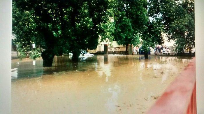 Coca inundado1